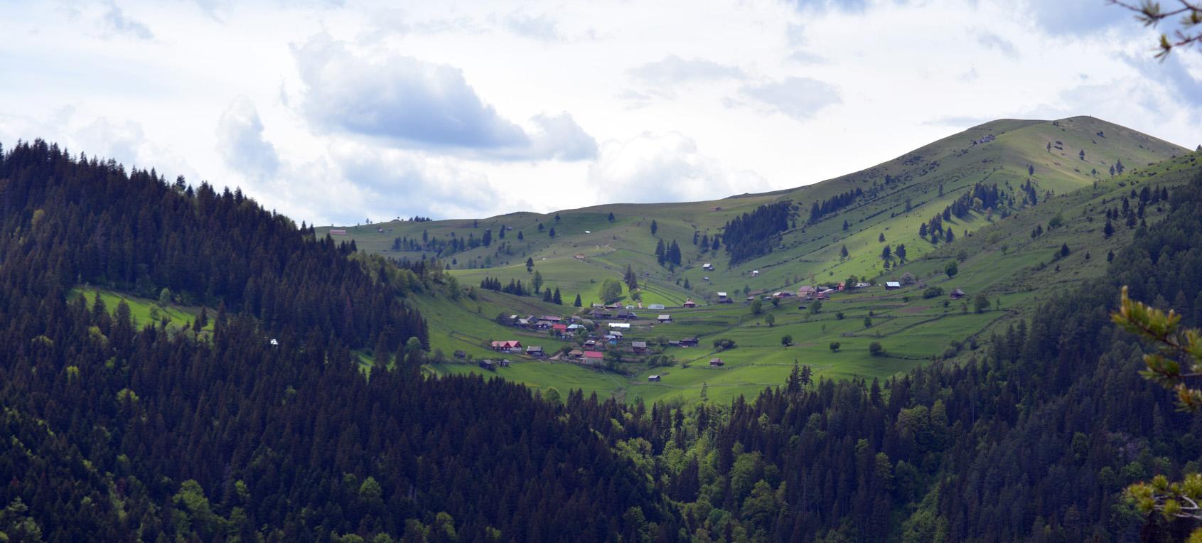 03_Astragalus