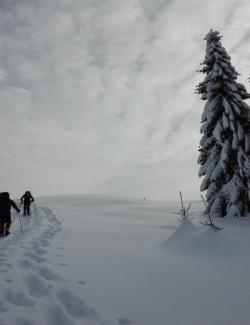 https://outdoortheworld.com/wp-content/uploads/2020/04/04_IMG_20190119_114949-250x325.jpg